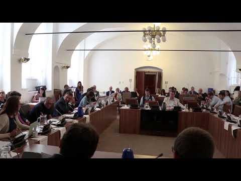 Tamara Kováčová (EduIn) – Problémy článku 4 pro vzdělávání