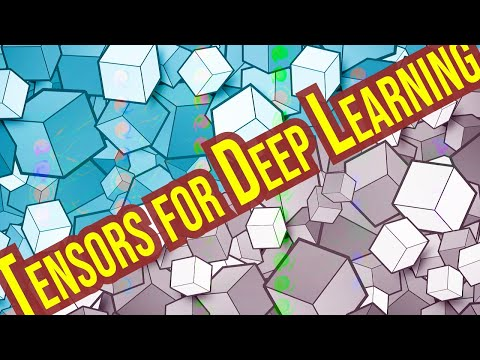 Rank, Axes, and Shape Explained - Tensors for Deep Learning