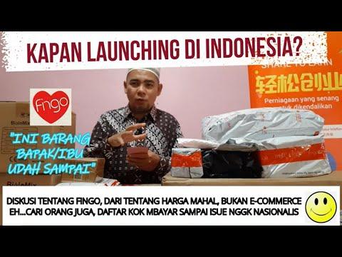 Kapan Fingo Launching Di Indonesia