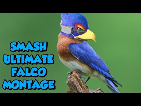 FALCO IS BROKEN! (Super Smash Bros. Ultimate Montage)