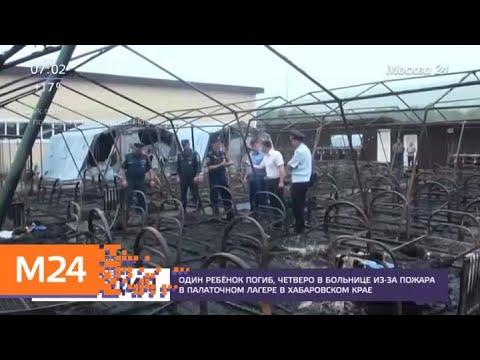 Актуальные новости России и мира за 23 июля - Москва 24