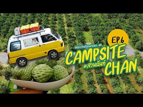 พาหมามาแค้มป์ปิ้ง---Campsite-C