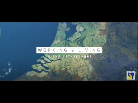 Working and living in the Netherlands TEASER (English subs) photo