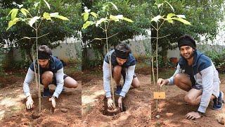 Sudheer Babu Green India Challenge | Latest Tollywood News | TFPC - TFPC
