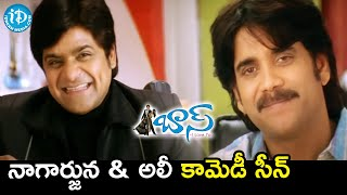 Nagarjuna & Ali Comedy Scene | Boss Telugu Movie Scenes | Nayanthara | Shriya | iDream Movies - IDREAMMOVIES