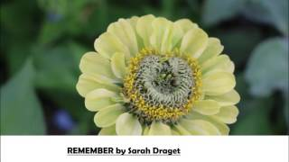 Remember by Sarah Draget