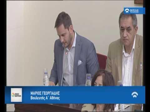 Μ. Γεωργιάδης / Επιτροπή Θεσμών και Διαφάνειας / 23-05-2017
