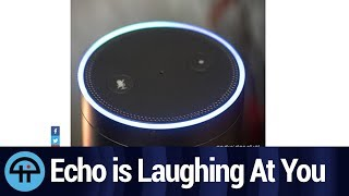 Amazon Echo is Laughing At You