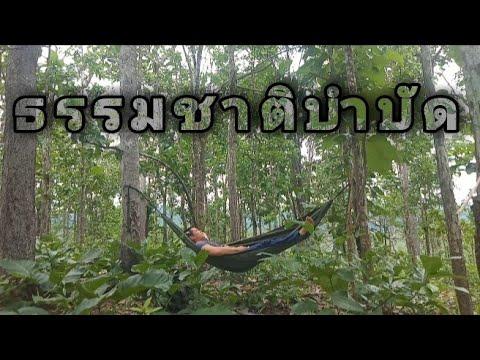 นอนป่าคนเดียว-พักผ่อนนอนป่าสุด