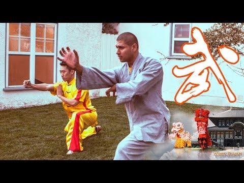 Download Youtube To Mp3 Kung Fu Backyard Party Wushu Shaolin Entertainment 2014