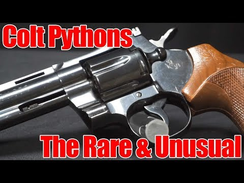 Colt Pythons: The Rare and Unusual