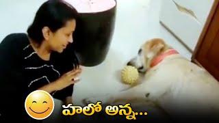 Anchor Suma Making Fun With Her Dog | #sumakanakala | హలో అన్న | IG Telugu - IGTELUGU