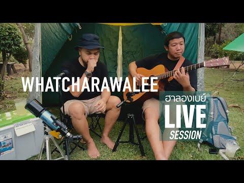 ฮาลองเบย์-LIVE-SESSION---วัชรา