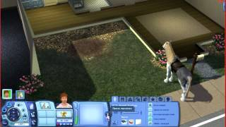 Sims 3 - Семейство Телебзда ( Дом, конь, работа... )