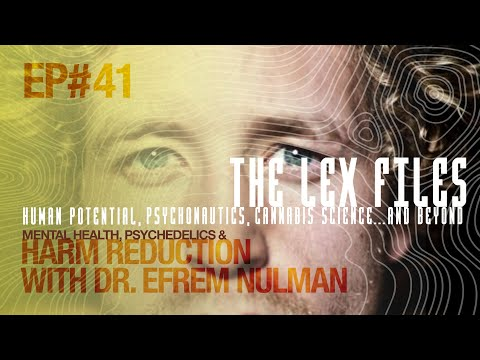 Mental Health, Psychedelics & Harm Reduction with Dr. Efrem Nulman | Ep. 41 | The Lex Files