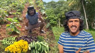 Actor Upendra Turns Farmer In Lockdown   IndiaGlitz Telugu - IGTELUGU