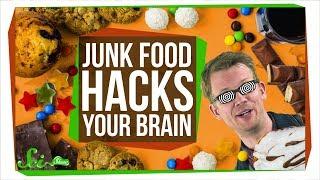 How Junk Food Hacks Your Brain
