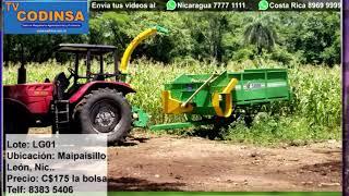 VENTA DE GANADO / MAQUINARIA AGROPECUARIA TV CODINSA 22 ABRIL 2021