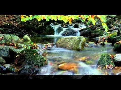 Za svaku kap čiste vode - radio emisija 5. januar 2012.