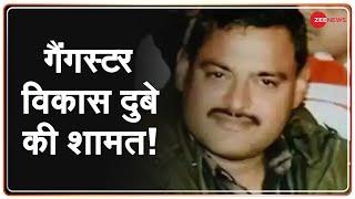 UP police की 25 से ज़्यादा टीम Gangster Vikas Dubey की तलाश में जुटी | Breaking News - ZEENEWS