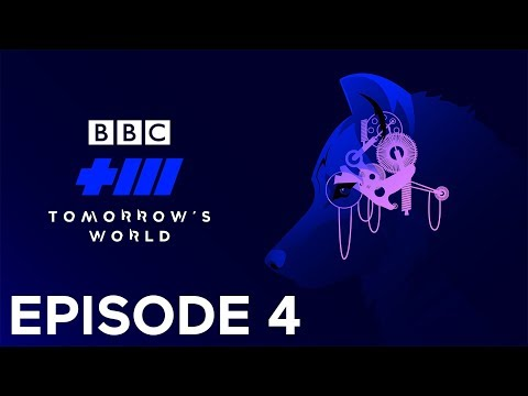 Electric Sheep - Tomorrow's World | Episode 4 - BBC