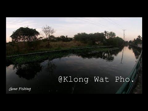 Gone-Fishing---Street-Fishing-