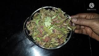 చింత చిగురు శుభ్రపరచు విధానం| chinta chiguru bagu cheyatam| chinta chiguru cleaning|andhra recipes - ANDHRARECIPES