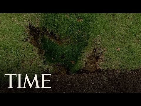 A Sinkhole Has Been Spotted On The White House Lawn   TIME