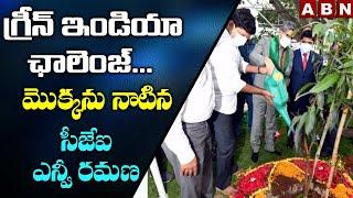 CJI NV Ramana Accepts Green India Challenge, Plants Sapling In Raj Bhavan | ABN Telugu - ABNTELUGUTV
