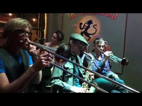 New Orleans Jazz Vipers -