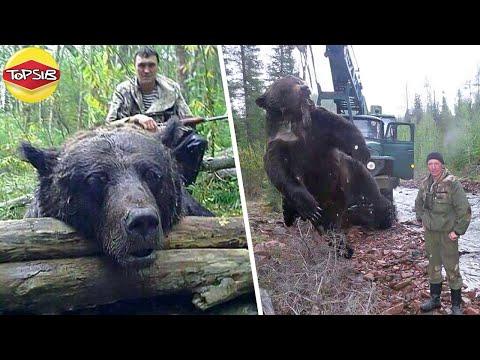 สัตว์ขนาดใหญ่ที่สุดที่มนุษย์เค