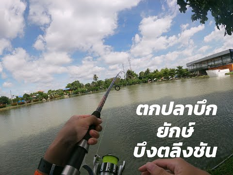 Gone-Fishing-ปลาบึกยักษ์แห่งบึ