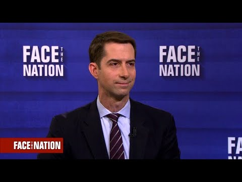 Sen. Cotton on a skills-based immigration policy