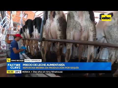 Precio de la leche aumentaría