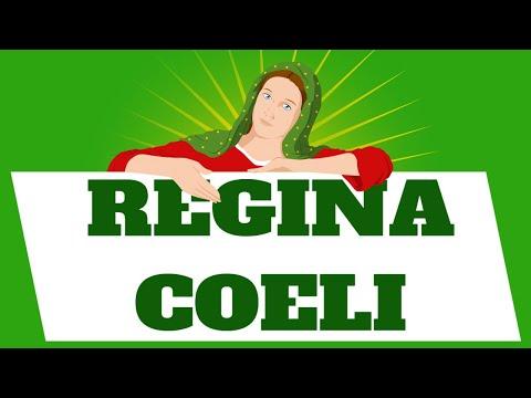 #REGINA COELI de hoy Martes 11 de Mayo 2021