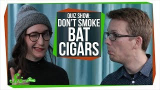 Scishow Quiz Show: Supersonic Giggles and Bat Cigars
