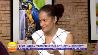 Benefits To Protecting Your Intellectual Property | Sunrise:  Rest Ja  | CVMTV