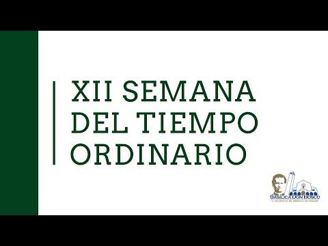 Eucaristía del martes de la XII semana del Tiempo Ordinario. Misa vespertina.