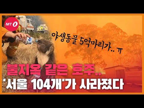 [현장+]지독한 호주 산불…'서울 104개'가 사라졌다!