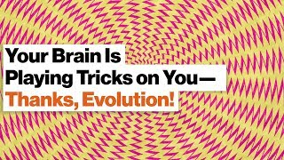 Your Brain Is an Illusion Factory: Time, Color, Causality | Dean Buonomano