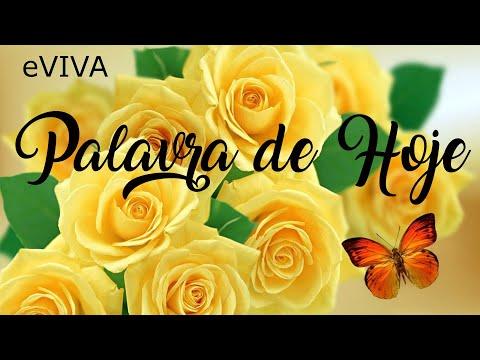 PALAVRA DE HOJE 08 DE JUNHO 2020 eVIVA MENSAGEM MOTIVACIONAL PARA REFLEXÃO 1 JOÃO 5 SALMO BOM DIA
