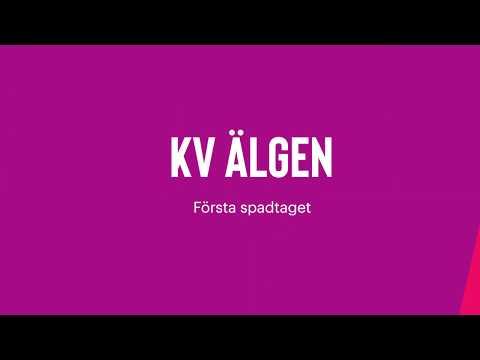 Spadtag kvarteret Älgen, Västerås