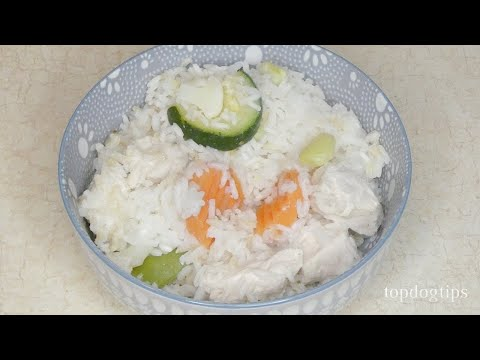 Chicken and Rice Recipe for Dogs with Sensitive Stomach