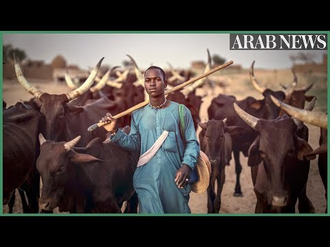 West Africa's Fulani nomads fight climate change to survive