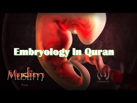 Embryology In Quran - علم الأجنة في القرآن الكريم