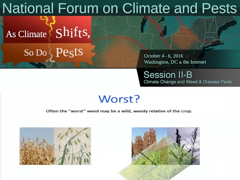 National Forum on Climate and Pests: Session II-B - Climate Change and Weed & Disease Pests