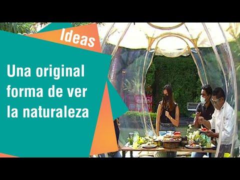 El iglú: Una original forma de ver la naturaleza | Ideas