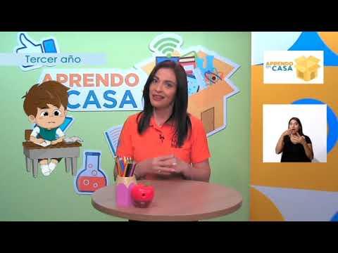 #AprendoEnCasa Español: Aplicación de Normas Gramaticales (Tercer Año - Primaria)