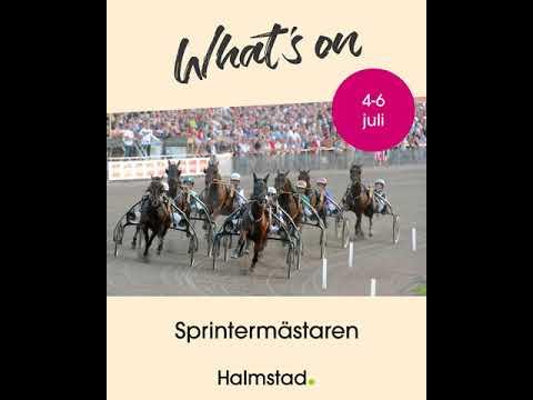 What´s on- på gång i Halmstad!