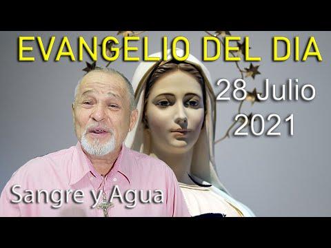 Evangelio Del Dia de Hoy - Miercoles 28 Julio 2021- Sangre y Agua